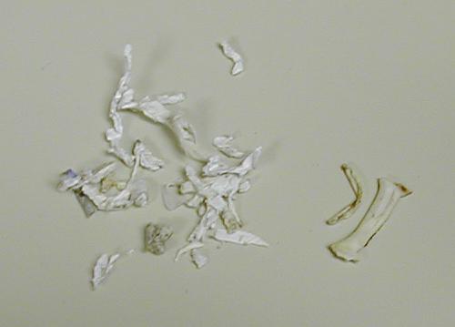 Paper Shreader Fix Royal Orca 3500